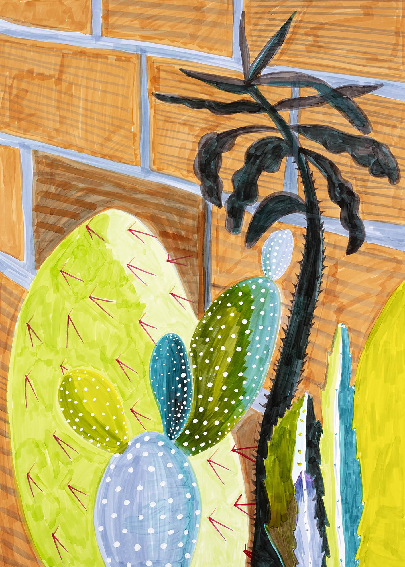 Dessin, Cactus, Kalanchoe sur un fond de briques