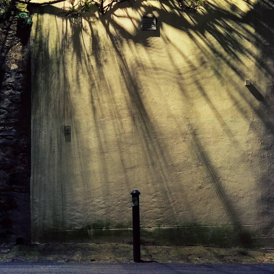 Quimper, Photographie Argentique, 2019 Cinestill 800T, Mamiya C33, 80mm